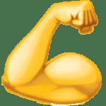 flexed biceps